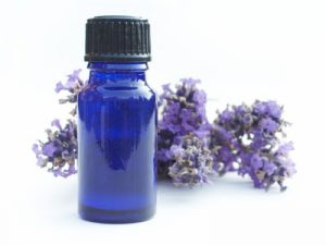 Lavender Bottle on white background